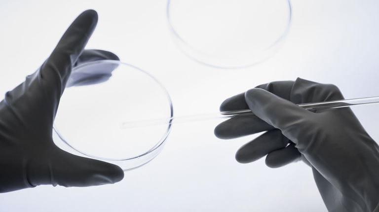 Mani da ricercatore in laboratorio